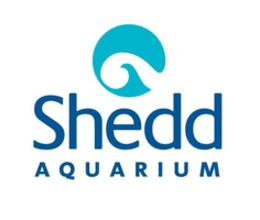 image regarding Newport Aquarium Coupons Printable identified as Shedd Aquarium Discount coupons - Help you save w/ Sep. 2019 Promo Codes and Offers