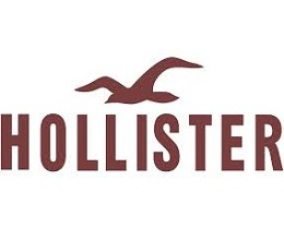 graphic about Hollister Printable Coupon titled Hollister Co. Discount coupons - Help save 20% w/ Sep. 2019 Promo Codes
